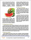 0000091080 Word Template - Page 4