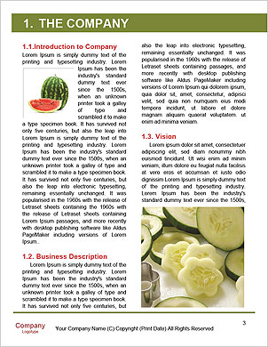 0000091082 Word Template - Page 3