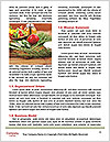 0000091082 Word Templates - Page 4