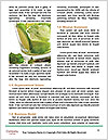 0000091085 Word Templates - Page 4