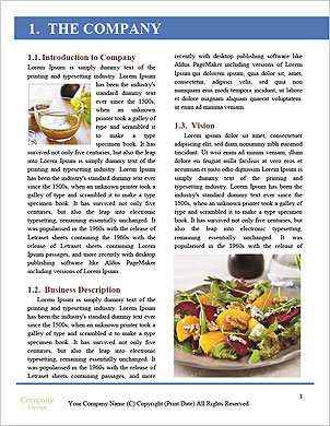 0000091104 Word Template - Page 3