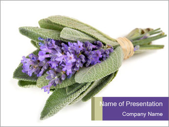 Lavender and sage PowerPoint Template - Slide 1