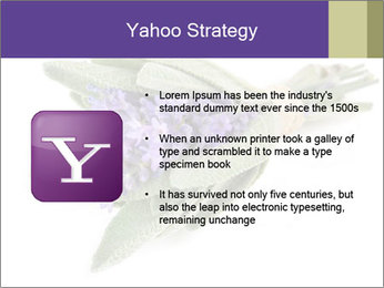 Lavender and sage PowerPoint Template - Slide 11