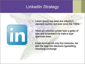 Lavender and sage PowerPoint Template - Slide 12
