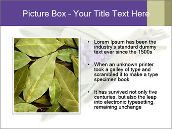 Lavender and sage PowerPoint Template - Slide 13