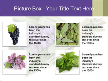 Lavender and sage PowerPoint Template - Slide 14