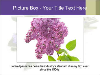 Lavender and sage PowerPoint Template - Slide 15