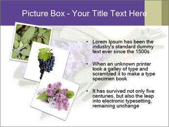 Lavender and sage PowerPoint Template - Slide 17