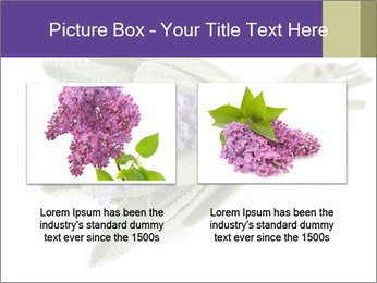 Lavender and sage PowerPoint Template - Slide 18
