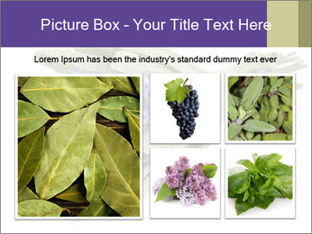 Lavender and sage PowerPoint Template - Slide 19