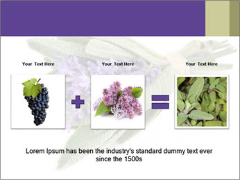 Lavender and sage PowerPoint Template - Slide 22