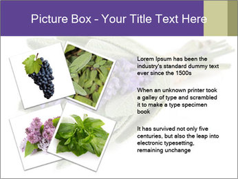 Lavender and sage PowerPoint Template - Slide 23