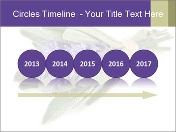 Lavender and sage PowerPoint Template - Slide 29