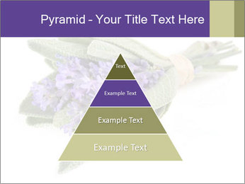 Lavender and sage PowerPoint Template - Slide 30