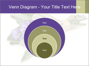Lavender and sage PowerPoint Template - Slide 34