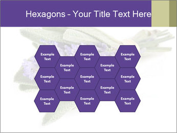 Lavender and sage PowerPoint Template - Slide 44