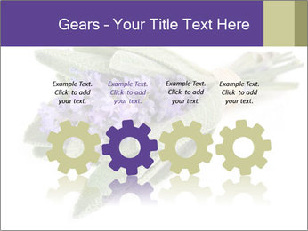 Lavender and sage PowerPoint Template - Slide 48