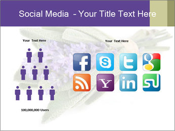 Lavender and sage PowerPoint Template - Slide 5