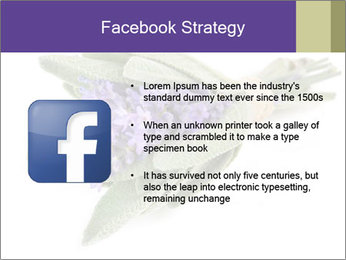 Lavender and sage PowerPoint Template - Slide 6