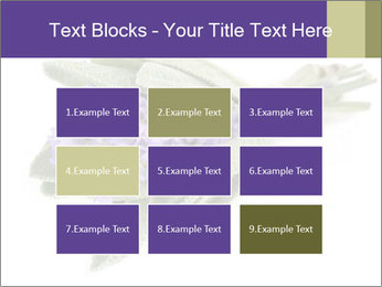 Lavender and sage PowerPoint Template - Slide 68