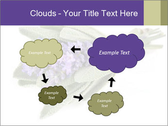 Lavender and sage PowerPoint Template - Slide 72