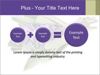 Lavender and sage PowerPoint Template - Slide 75