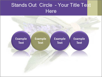 Lavender and sage PowerPoint Template - Slide 76
