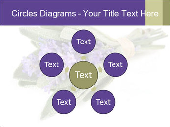 Lavender and sage PowerPoint Template - Slide 78