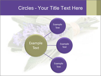 Lavender and sage PowerPoint Template - Slide 79