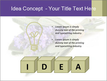 Lavender and sage PowerPoint Template - Slide 80
