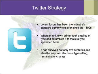Lavender and sage PowerPoint Template - Slide 9
