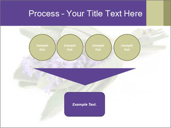 Lavender and sage PowerPoint Template - Slide 93