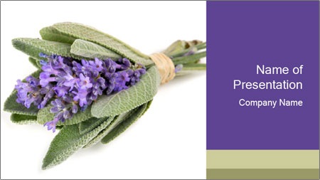Lavender and sage PowerPoint Template