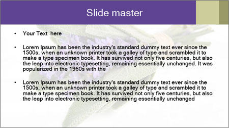 Lavender and sage PowerPoint Template - Slide 2