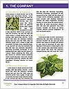 0000091107 Word Templates - Page 3