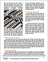 0000091110 Word Template - Page 4