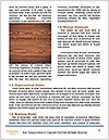 0000091112 Word Template - Page 4