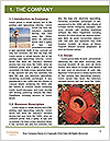 0000091114 Word Templates - Page 3