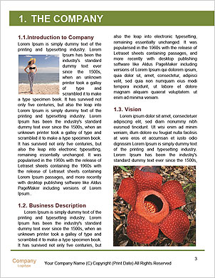 0000091114 Word Template - Page 3
