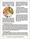 0000091114 Word Templates - Page 4