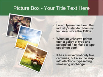 Farm Pigs PowerPoint Template - Slide 17