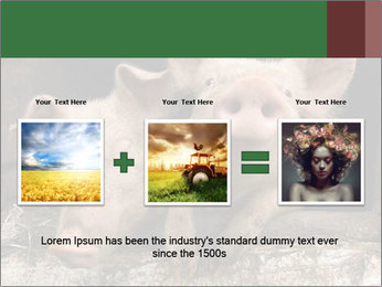 Farm Pigs PowerPoint Template - Slide 22