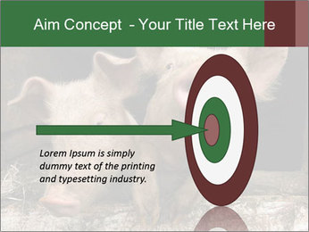 Farm Pigs PowerPoint Template - Slide 83