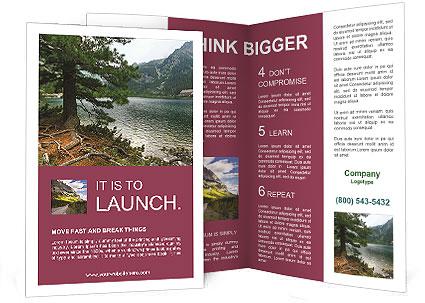 0000091132 Brochure Template