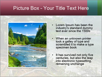 Lake In Slovakia PowerPoint Template - Slide 13