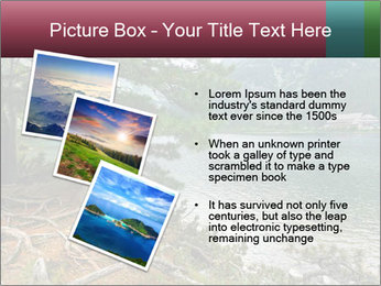 Lake In Slovakia PowerPoint Template - Slide 17