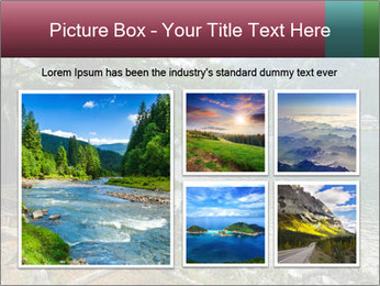 Lake In Slovakia PowerPoint Template - Slide 19