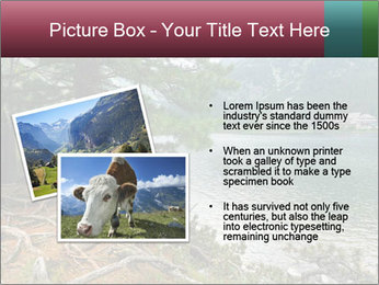 Lake In Slovakia PowerPoint Template - Slide 20
