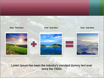 Lake In Slovakia PowerPoint Template - Slide 22