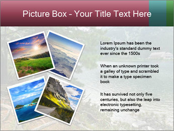 Lake In Slovakia PowerPoint Template - Slide 23
